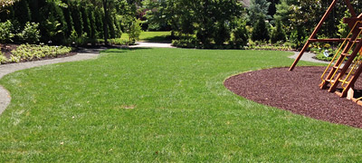 Sod Grass Seed Turf Seeding South Jersey (Burlington Mercer Camden County NJ)